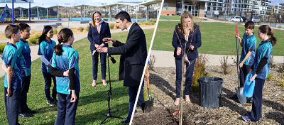 On Tuesday, the Minister for Education, Yvette Berry visited the school to assist in planting the Japanese Elm. She also provided the Student Parliament with the unique experience of lining up with a fellow Minister to face questions from the media.