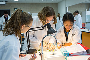 A colour photo of students in the modern lab at the 21st century Gungahlin College