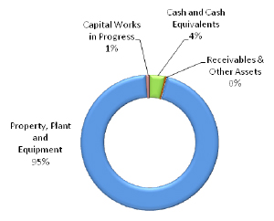 Graph showing total assets as at 30 June 2014