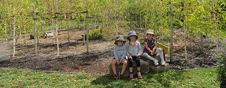 Back in May 2019, Fadden Preschool received a few new additions to their playground in the form of 40 Silver Birch trees, one planted for each student in the two preschool classes. The new trees were planted in a unique spiral pattern, leading to an enchanted fairy garden and small timber setting.