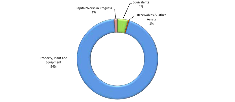 Figure C1.3: Total Assets as at 30 June 2015