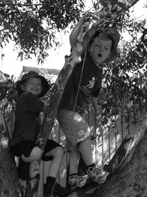 Photo of two preschool boys enjoying the view from a tree in the playground.