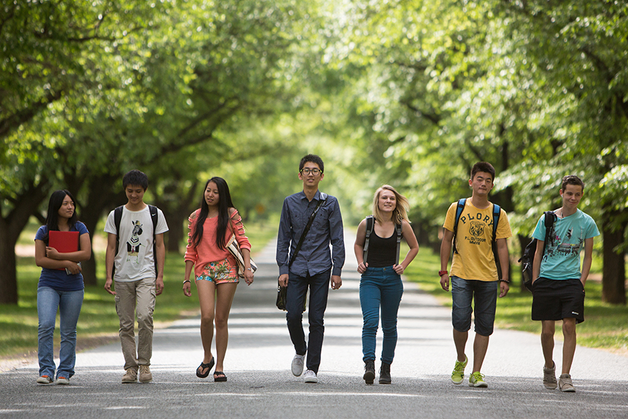Photo of a group of international high school students, with a local Canberra  female student, walking down a tree-lined pathway in Canberra