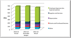 Graph showing the Directorate's expenditure for 2012-13.
